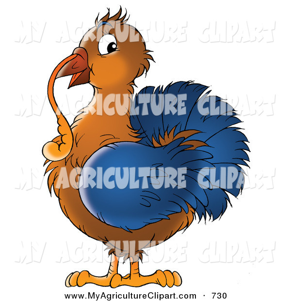 Agriculture Clipart Of A Brown And Blue Thanksgiving Turkey Bird With