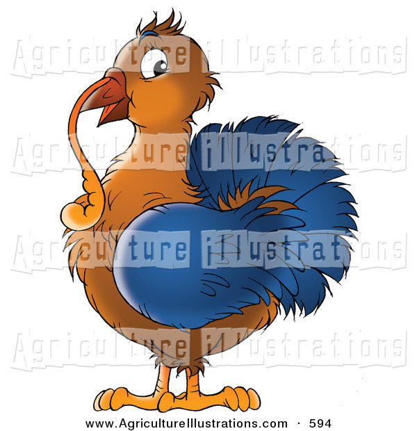 Agriculture Clipart Of A Cute Brown And Blue Turkey Bird With A Long