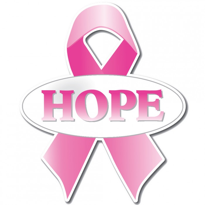 Breast Cancer Awareness  Hope  Pink Ribbon Yard Sign W Stakes