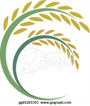 Clip Art   Rice Design On White Background   Stock Illustration