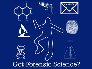 forensic science investigating a crime scene This site discusses the different types of forensic science and the use of forensics in crime scene investigations and pathology.