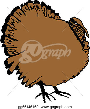Stock Illustration   Vector Turkey Bird   Clip Art Gg66146162