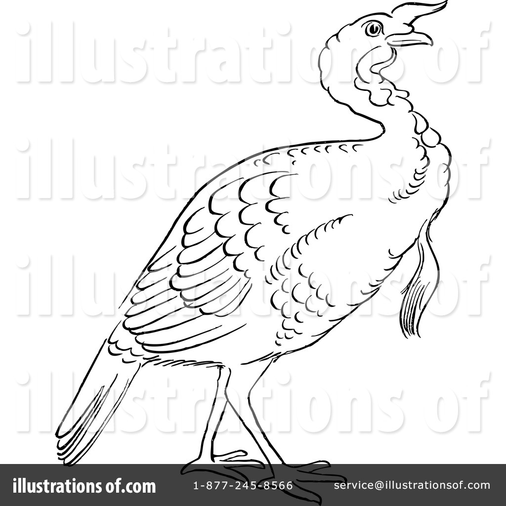 Toolbar Creator Galleries Related Turkey Beak Clipart Turkey Clipart