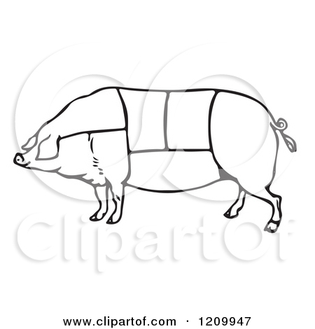 And White Pig With Butcher Sections Of Meat Cuts Poster Art Print Jpg