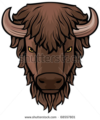 Buffalo Head Stock Photos Images   Pictures   Shutterstock
