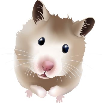 Clip Art Of A Fuzzy Teddy Bear Hamster