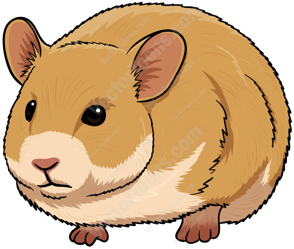 Hamster Clipart - Clipart Kid