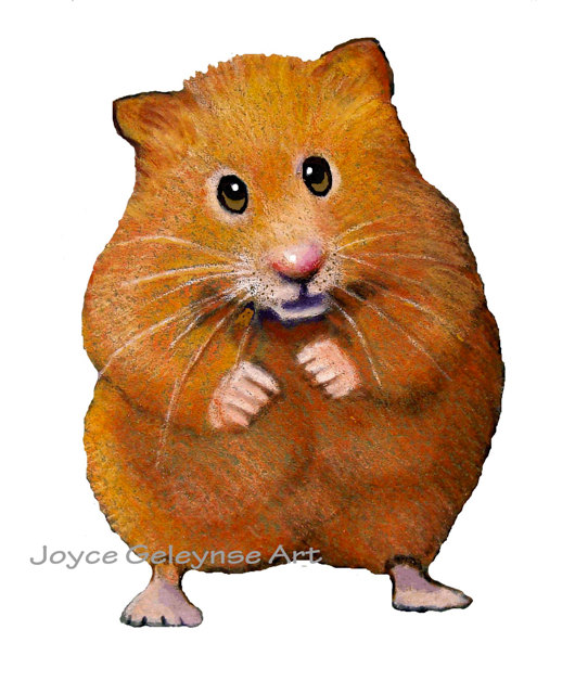 Cute Hamster Clipart
