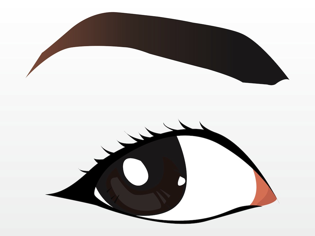 Eyebrow Clipart Freevector Pretty Brown Eye Jpg
