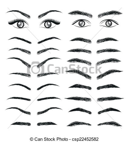 Vector Of Eyes Eyebrow Women And Man Vector Csp22452582   Search Clip
