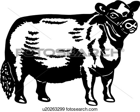 Breeds Bull Cattle Farm Livestock View Large Clip Art Graphic