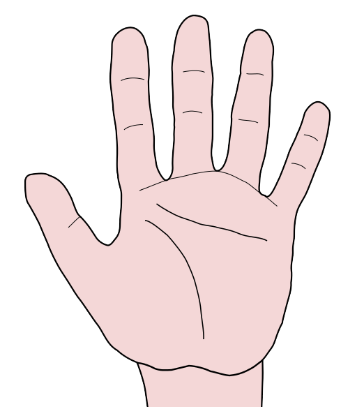 Free Palm Of Hand Clip Art