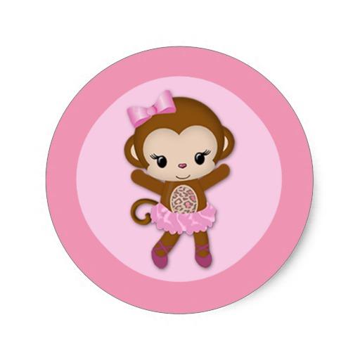 Cute baby girl monkey
