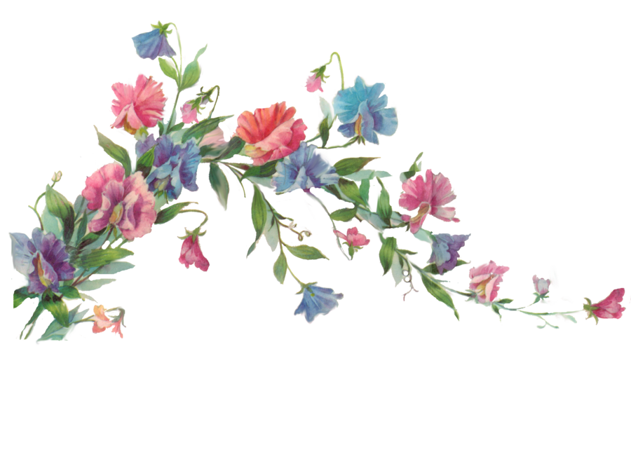 roses dividers clip art - photo #18