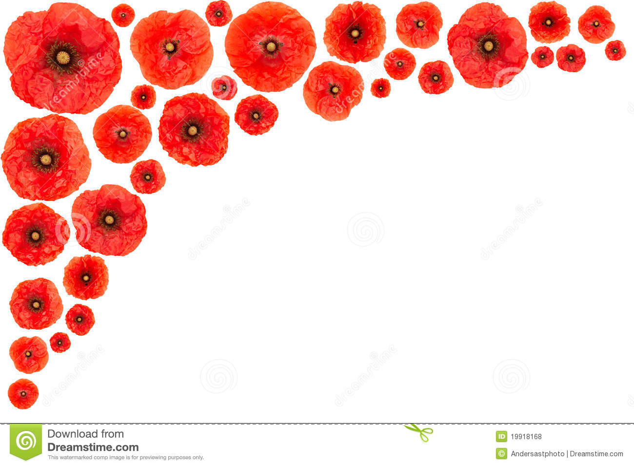 Poppy Border Clipart Clipart Suggest