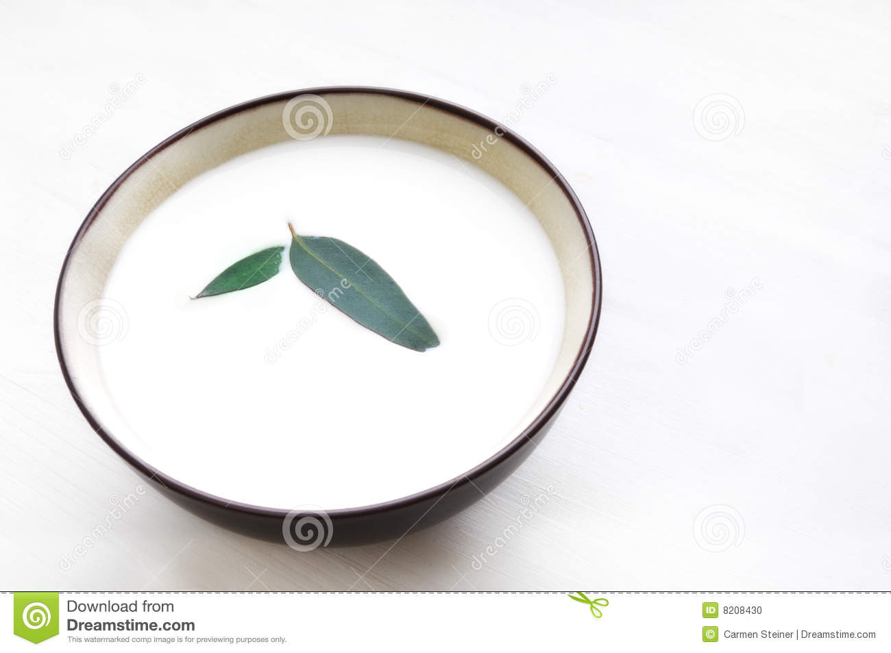 View Of A Bowl Of Milk And A Green Leaf Floating In It As A Garnish