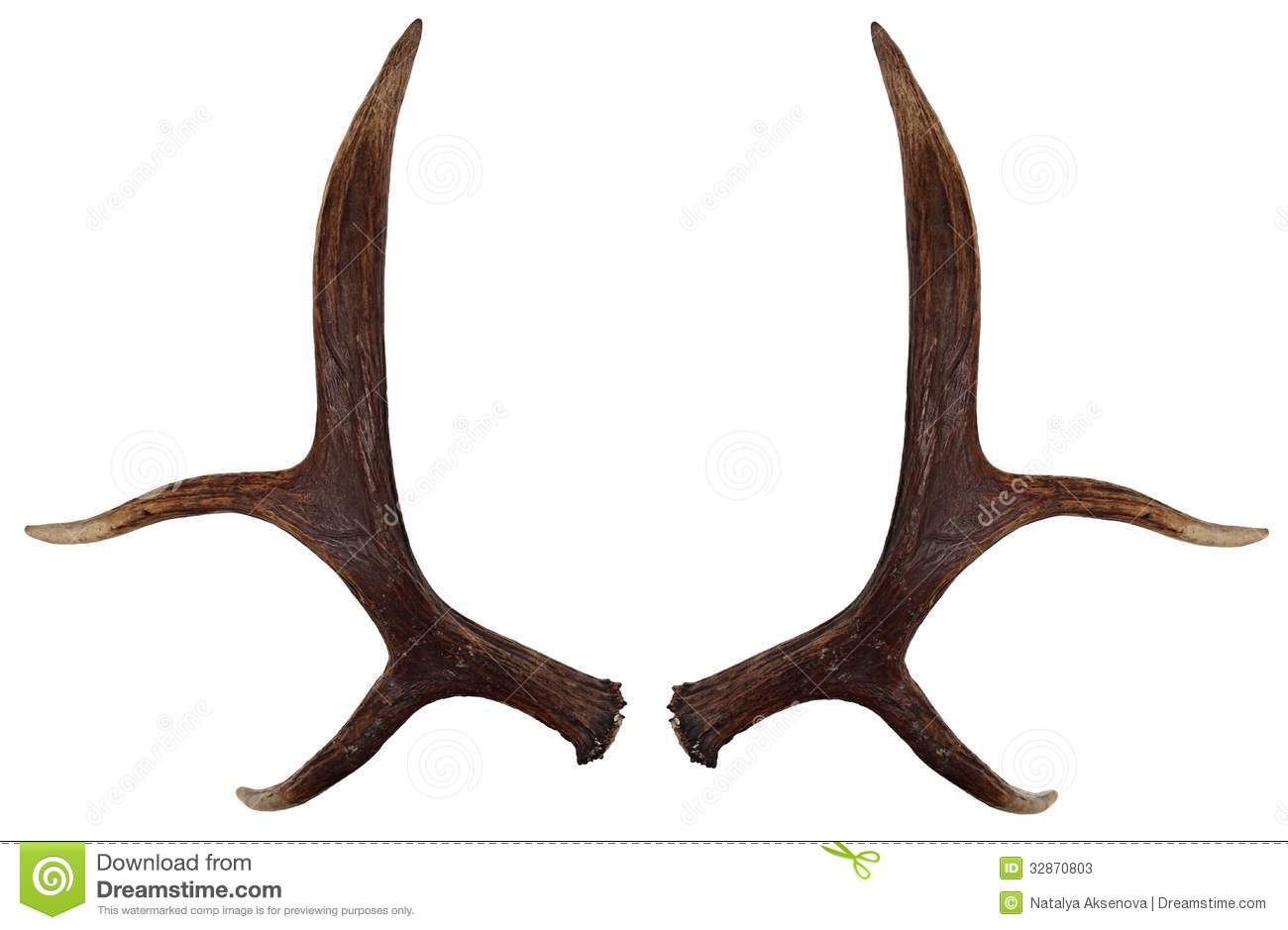 elk antlers graphic - photo #3