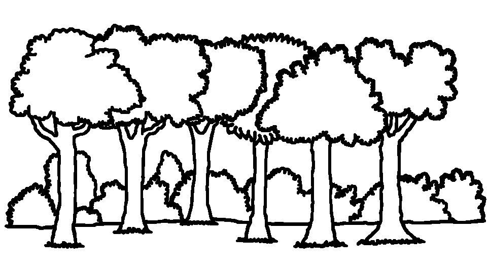 Forest Trail Clipart Black And White Forest Trail Colouring Pages