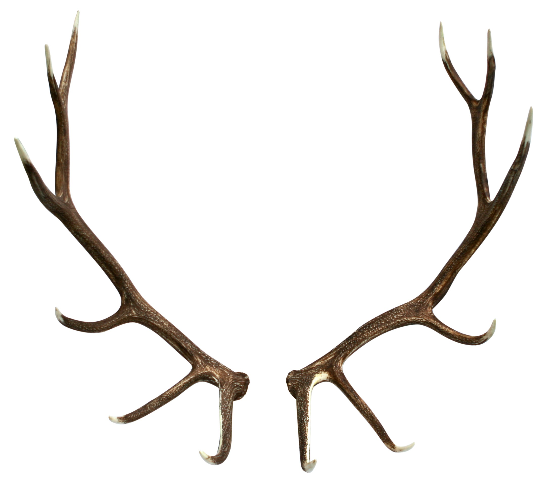 Home   Faux Elk Shed Antler Pair