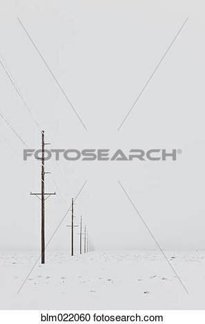 Telephone Poles In The Snow View Large Photo Image