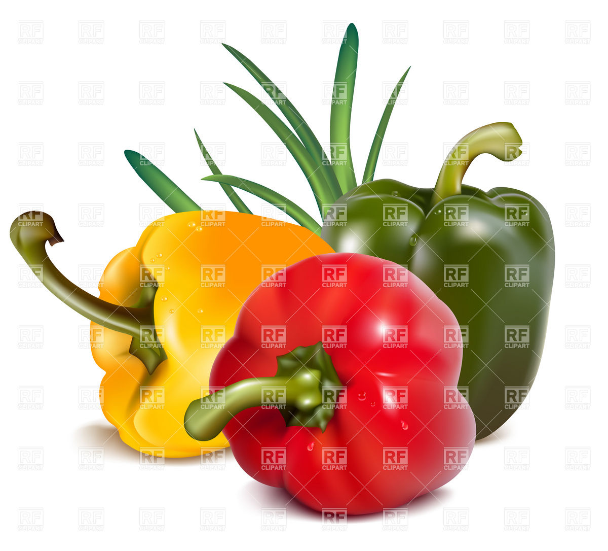 Bell Pepper Plant Clipart Color Peppers With Onion