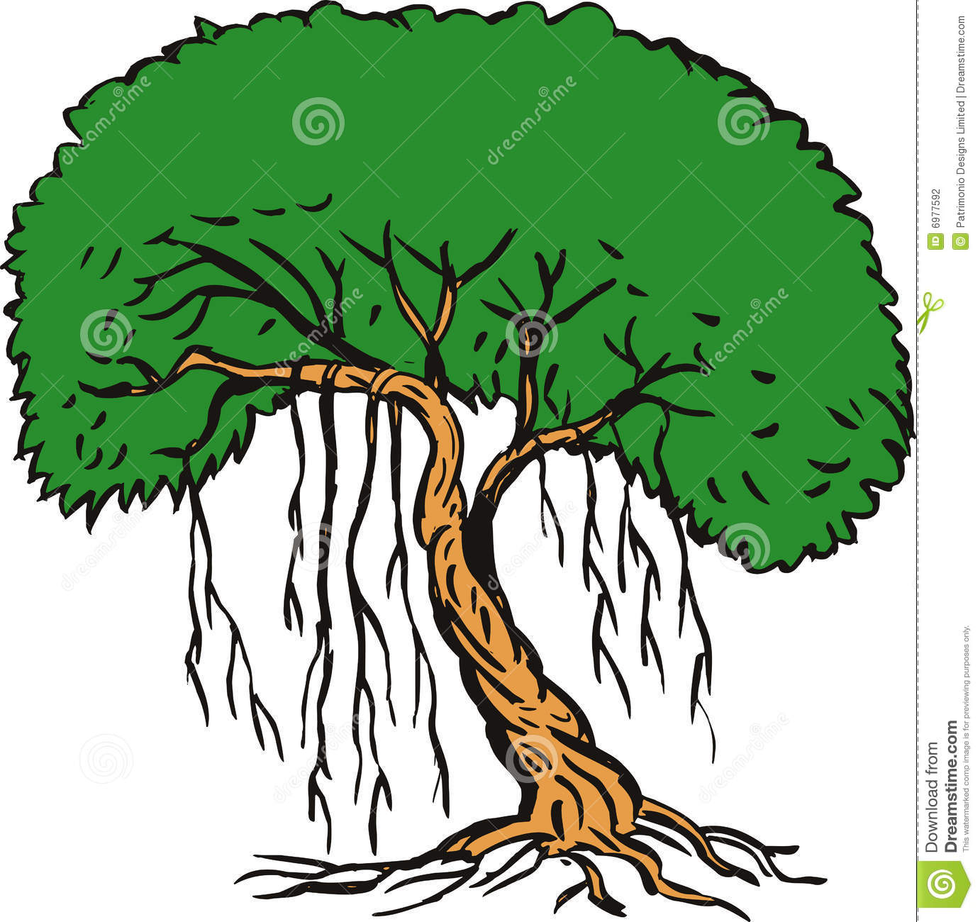 Jungle Trees And Vines Clip Art Tree With Vines