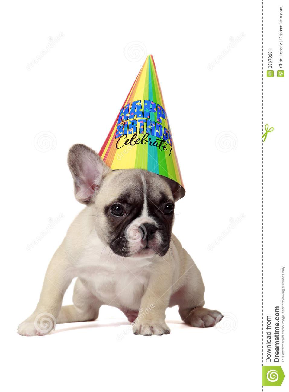 Puppy Birthday Clipart Happy Birthday Puppy