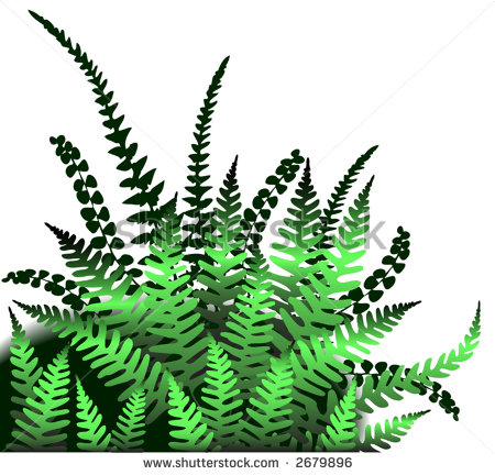 Clip Art Fern Clipart fern leaf vector clip art stencil clip