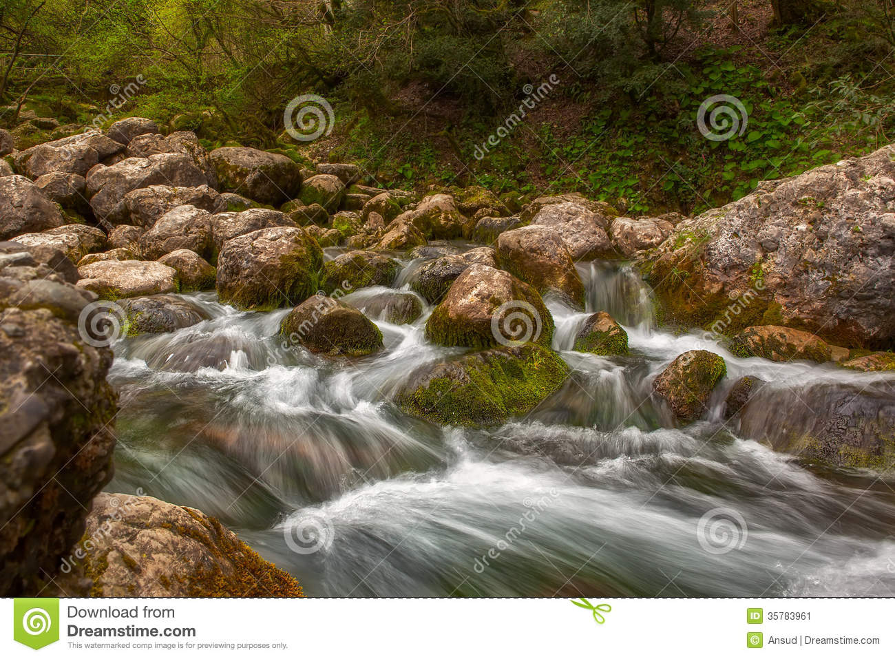Mountain River Water Stream Over Rocks In The Forest Stock Image