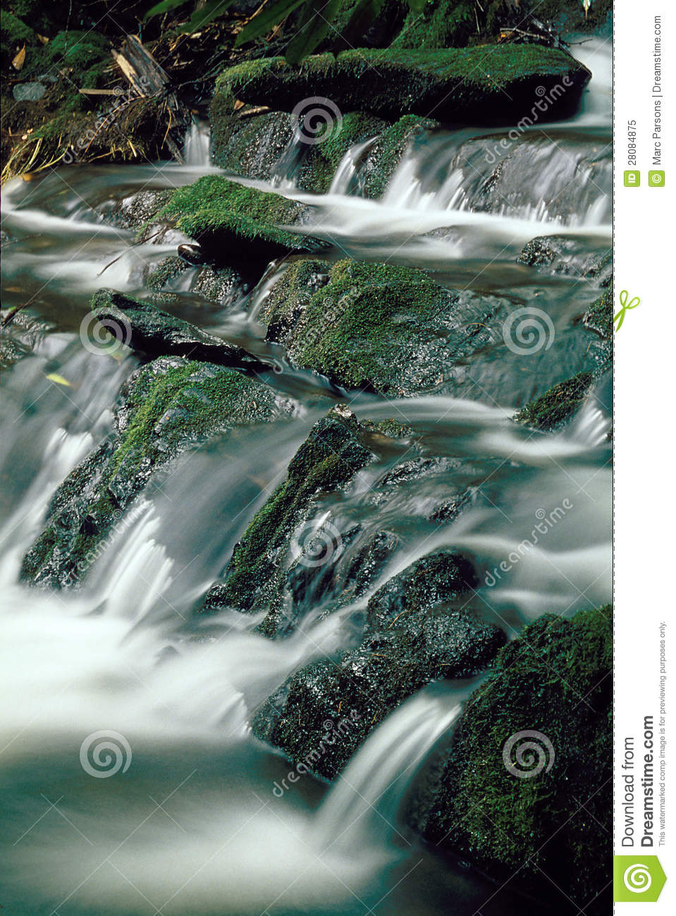 Mountain Stream Over Mossy Rocks Royalty Free Stock Photo   Image