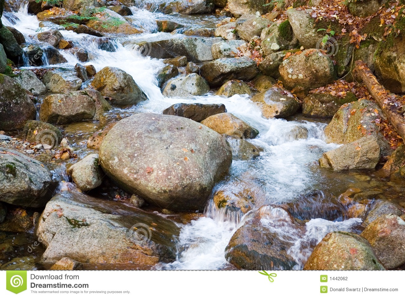 Rock Stream Stock Photography   Image  1442062