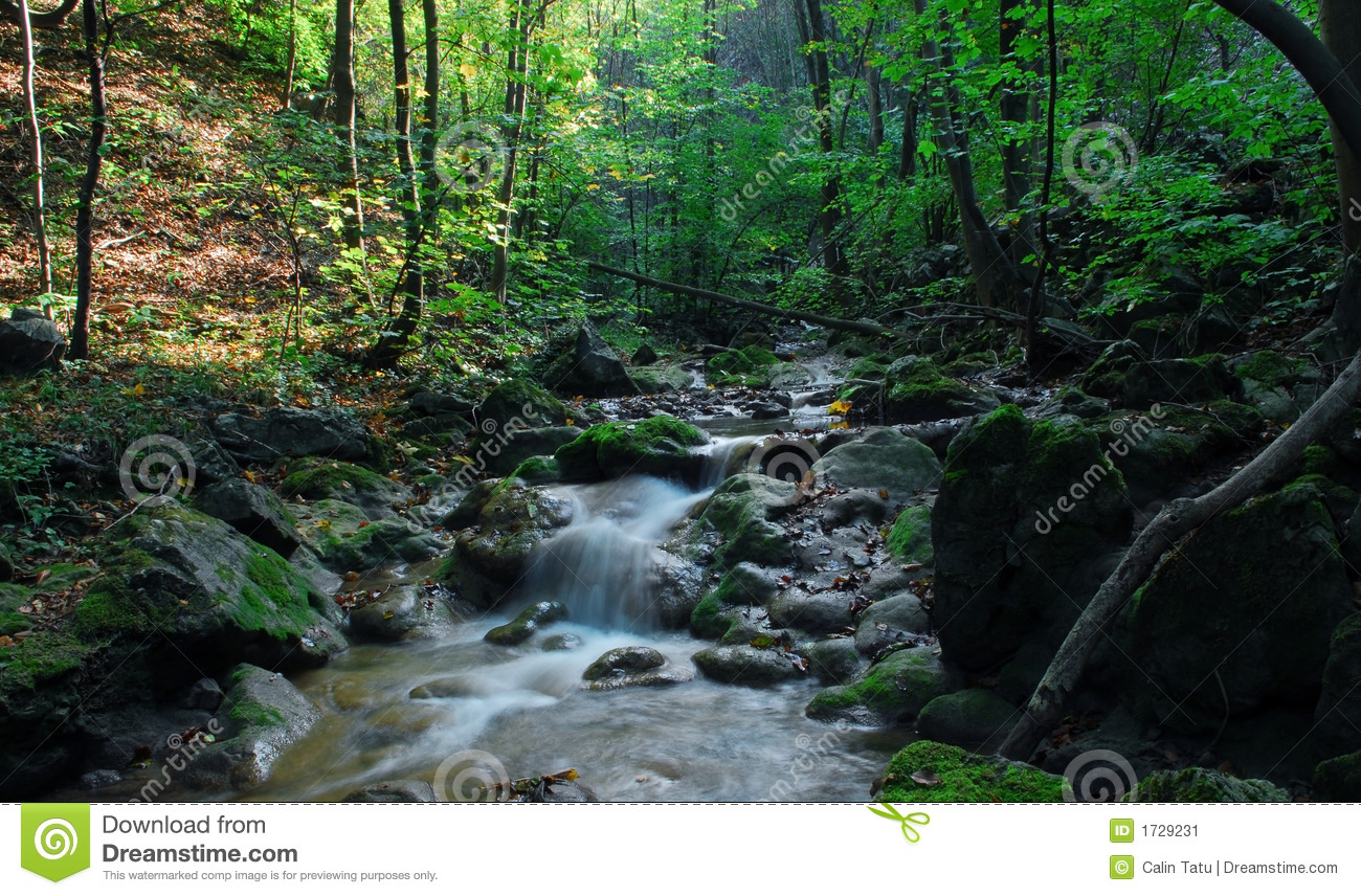 Stream With Small Waterfalls An Rocks Stock Image   Image  1729231