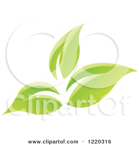 Clipart Of Green Organic Leaves 6   Royalty Free Vector Illustration