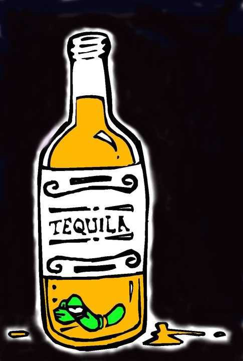 Tequila Clipart - Clipart Kid