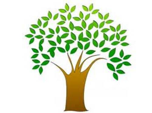 Tree Without Leaves Clipart - Clipart Kid