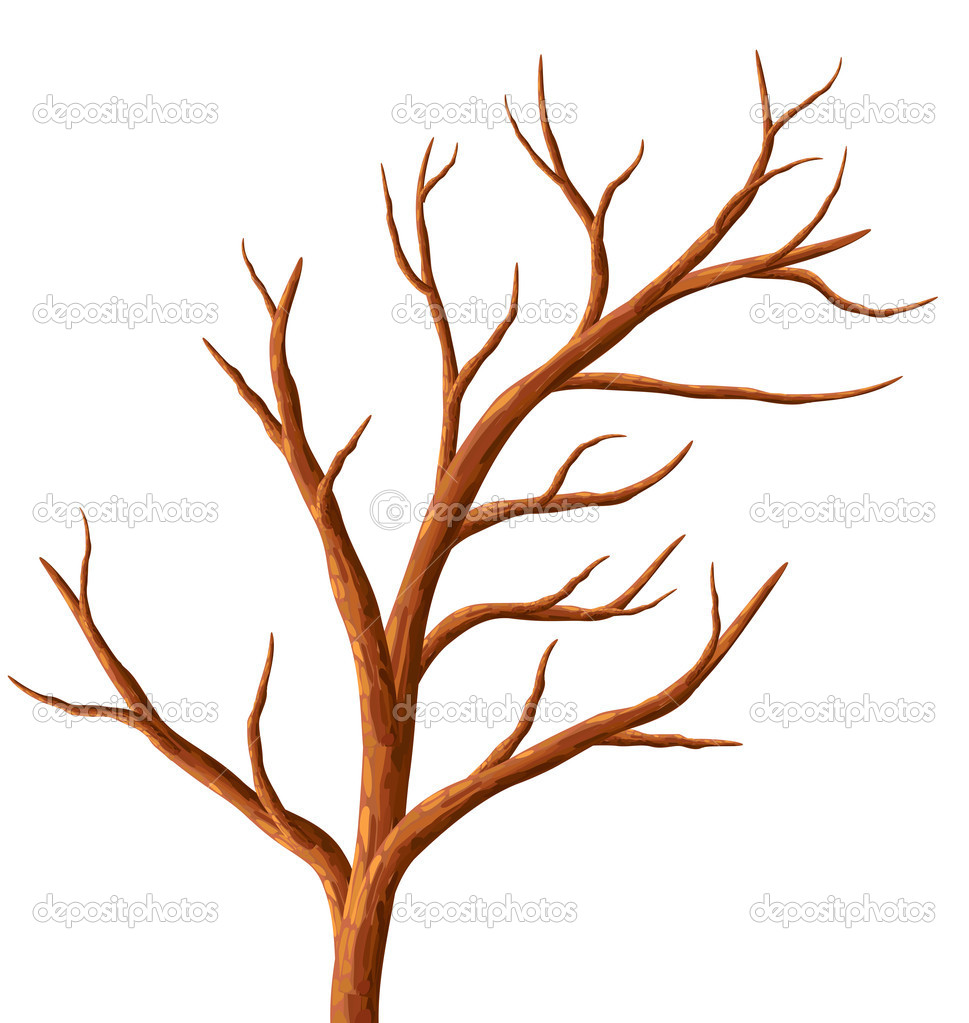 Tree Without Leaves    Stock Vector   Lukalex  8911973