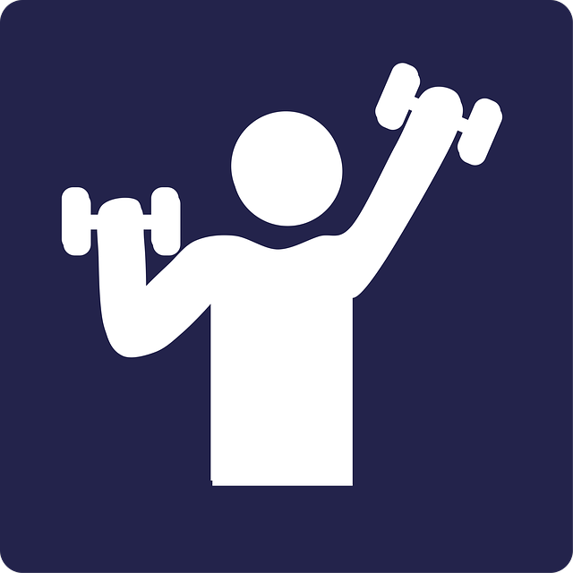 Free Fitness Workout Videos For A Better Body In 12 Weeks   Frost