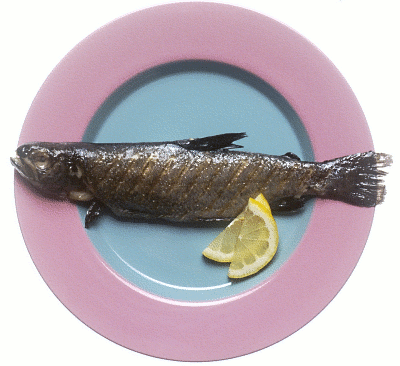 Grilled Fish   Http   Www Wpclipart Com Food Seafood Grilled Fish Png