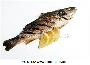 Stock Photo Of Grill Cooked Fish With Lemon Slices On White Background