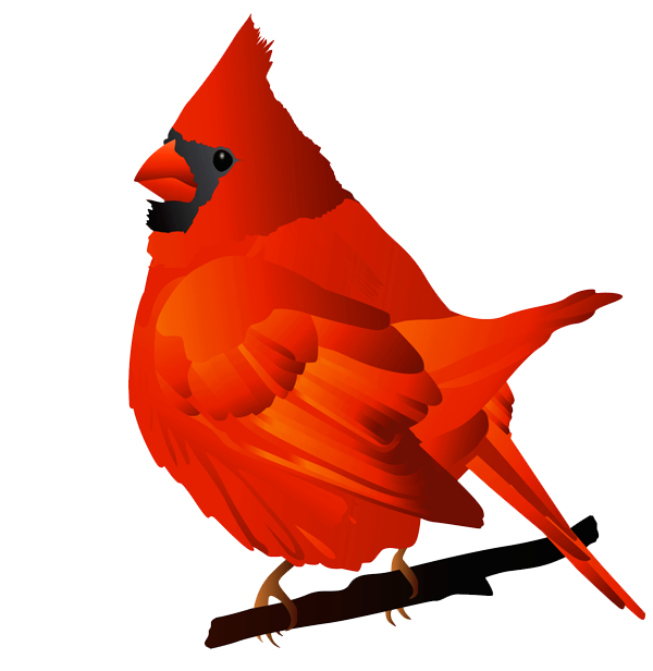 Cardinal Bird Clipart Free Cliparts That You Can Download To You