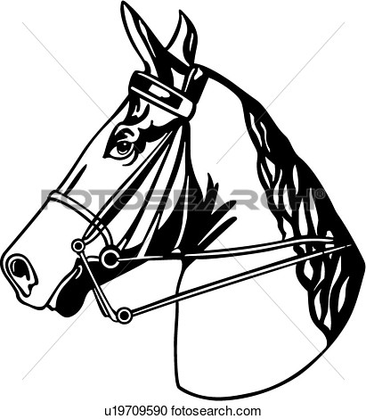 Back   Gallery For   Horse Tack Clip Art