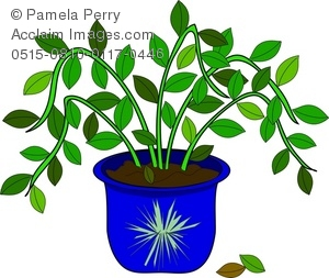 Clip Art Illustration Of A Potted House Plant Acclaim Stock Clipart