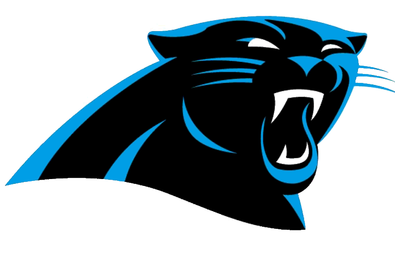 Panthers Logo Football Ny Large   Free Images At Clker Com   Vector