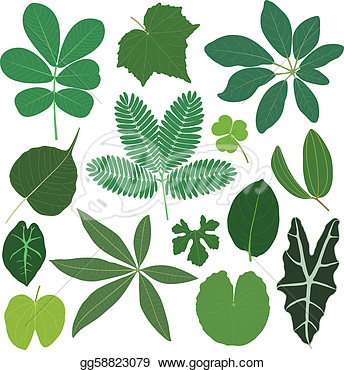 Stock   A Set Of Tropical Leaves In Color   Stock Clip Art Gg58823079