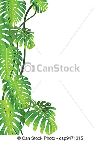 Tropical Plant Background   Csp9471315