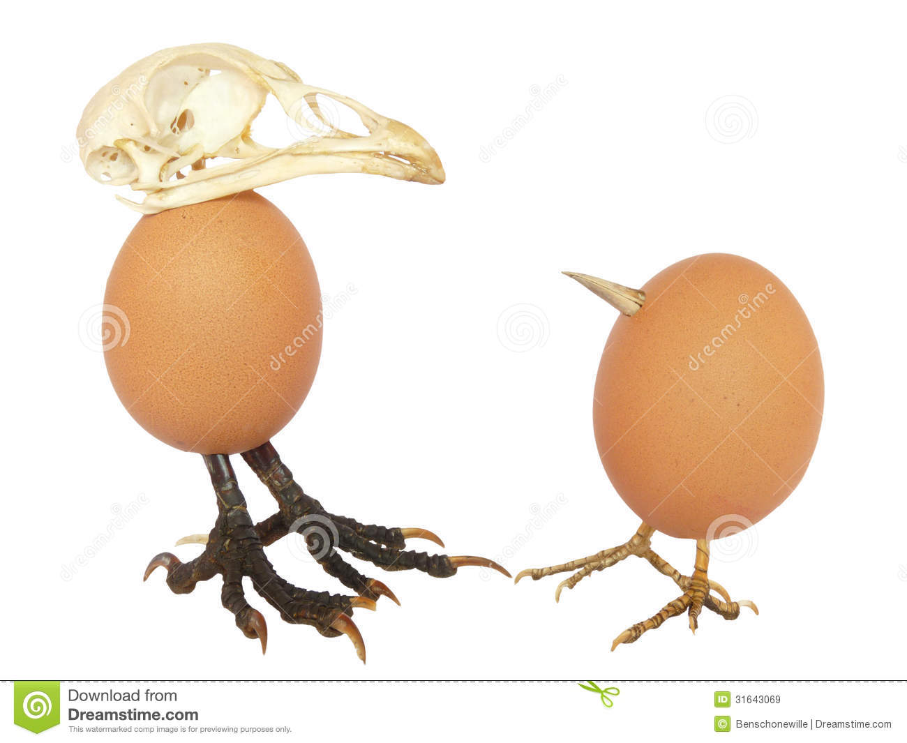 Two Chicken Eggs Looking Like Birds With A Beak A Skull And Legs As
