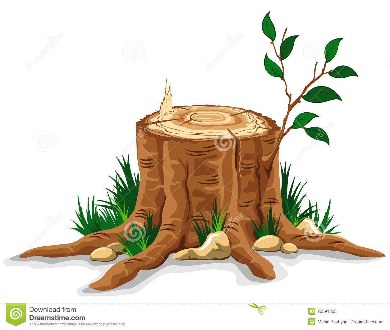 Young Branch On The Old Tree Stump  Detailed Vector Illustration