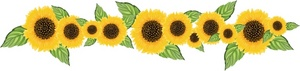 Sunflower Clip Art Images Sunflower Stock Photos   Clipart Sunflower