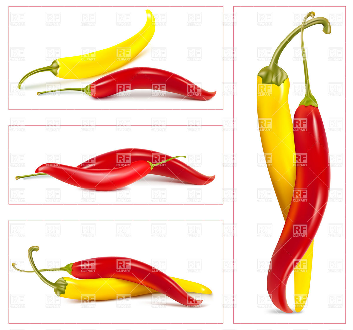 Red And Hot Chili Peppers 5265 Download Royalty Free Vector Clipart