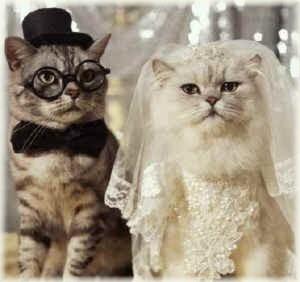 Free Clip Art Angels Cats Hearts Teddies Cats